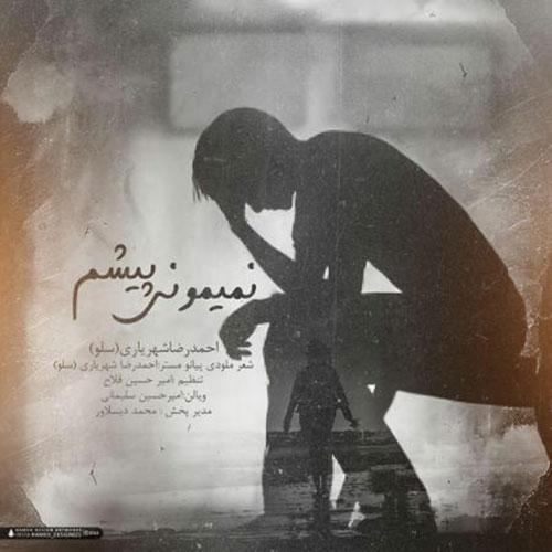 دانلود آهنگ احمد سلو به نام نمیمونی پیشم